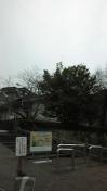 3月に雪!?